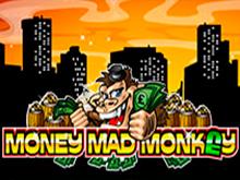 Money Mad Monkey в казино